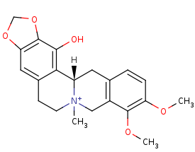 Picture of (S)-1-hydroxy-N-methylcanadine (click for magnification)