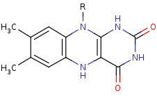 Picture of flavin hydroquinone (click for magnification)